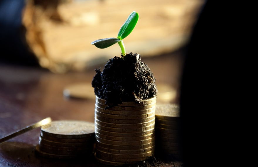 5 Easy Steps To Increasing Your Profits & Growing Your Business