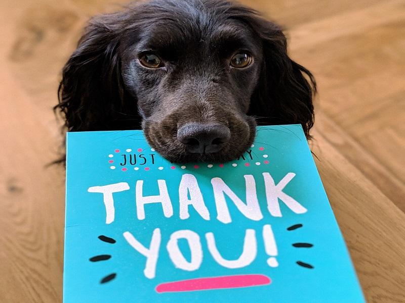 8 Proven Ways To Say Thank You To Customers & Prospects