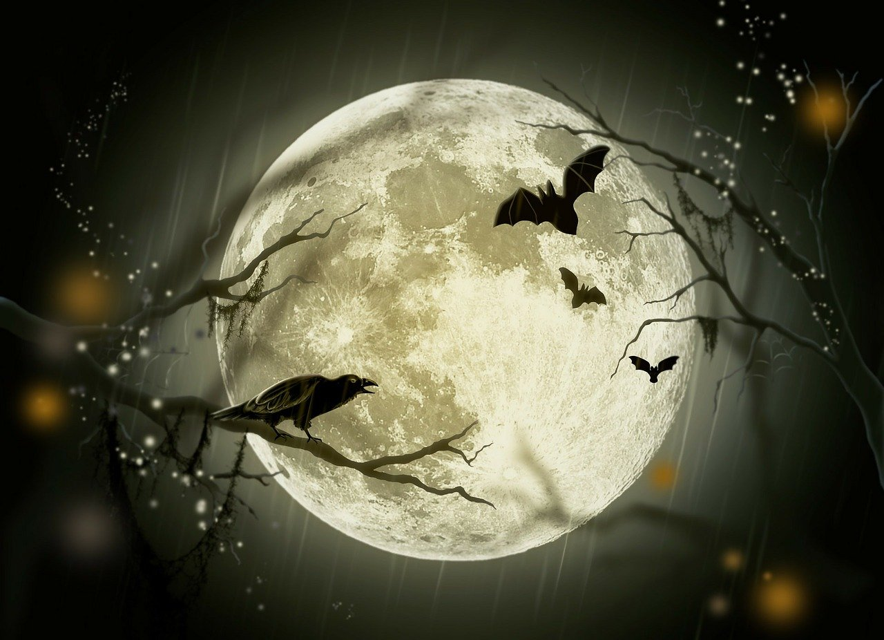 Spooky Season Is Upon Us! Here are 5 'Frightfully' Good Tips To Help Your Business Get More Sales!